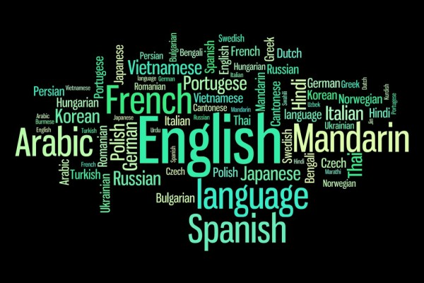 MMem 0136: Learning multiple languages at once