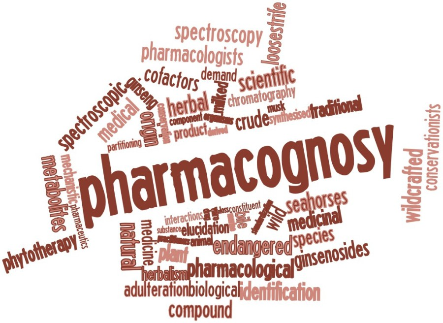 MMem 0308: Reprise: How do you memorize pharmacology terms?