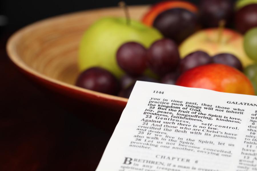 MMem 0456: Memorize Galatians in one month